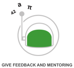 Provide feedback and mentoring